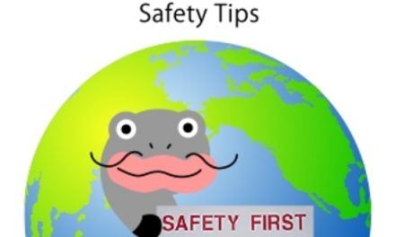 Support: Wiki-Safety, A Crowdsourced Platform for Safety Information and Tips