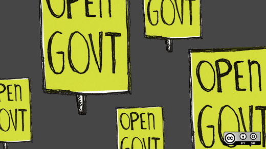 Crowdsourcing for Government
