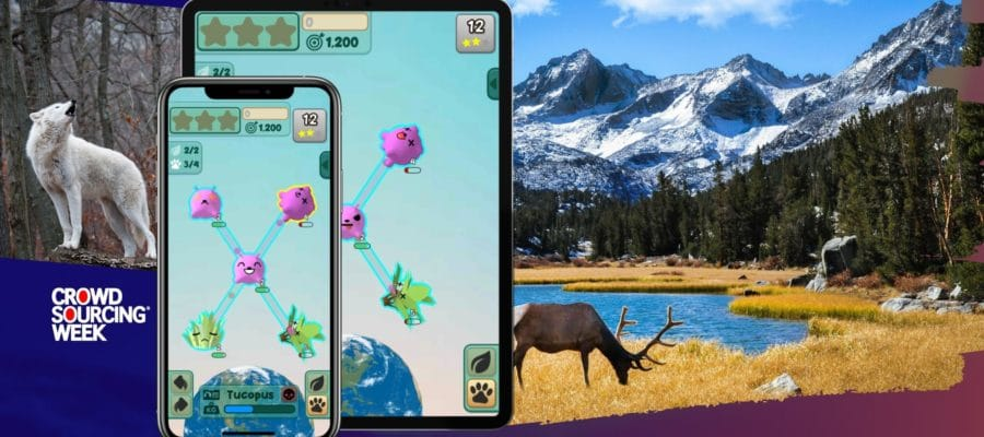 Crowdsourcing Environmental Solutions Through An Online Game That Builds Ecosystems